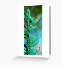 Jade Vine Greeting Card