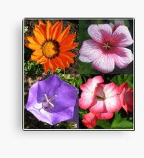Pretty Foursome - Sunlit Summer Flowers Collage Leinwanddruck