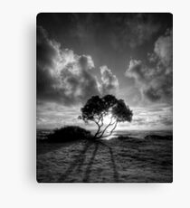Long Shadow Canvas Print