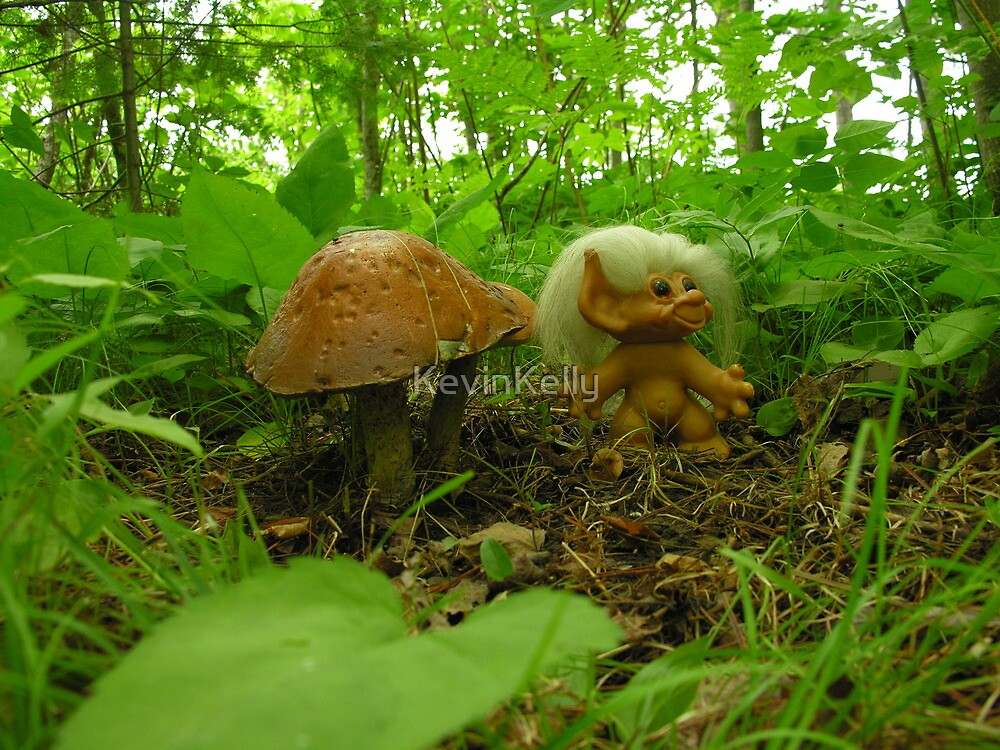 TROLL IN THE WOODS by KevinKelly