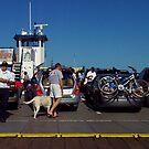 Sardines On The Bayfield by AuntieJ