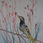 Regent Honeyeater - Endangered Australian Bird by Kay Cunningham