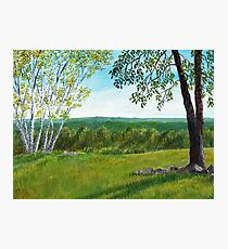 Holt Hill Photographic Print