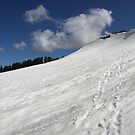 Basin Peak ~ Back Side  by Patty Boyte
