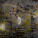 A Midsummer Night's Dream  by MedILS