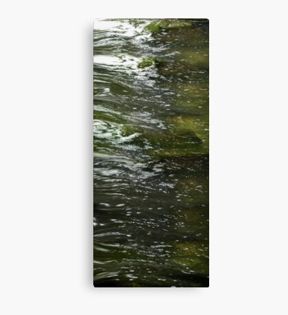 life....as the river flows Canvas Print