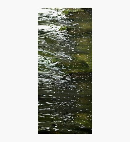 life....as the river flows Photographic Print