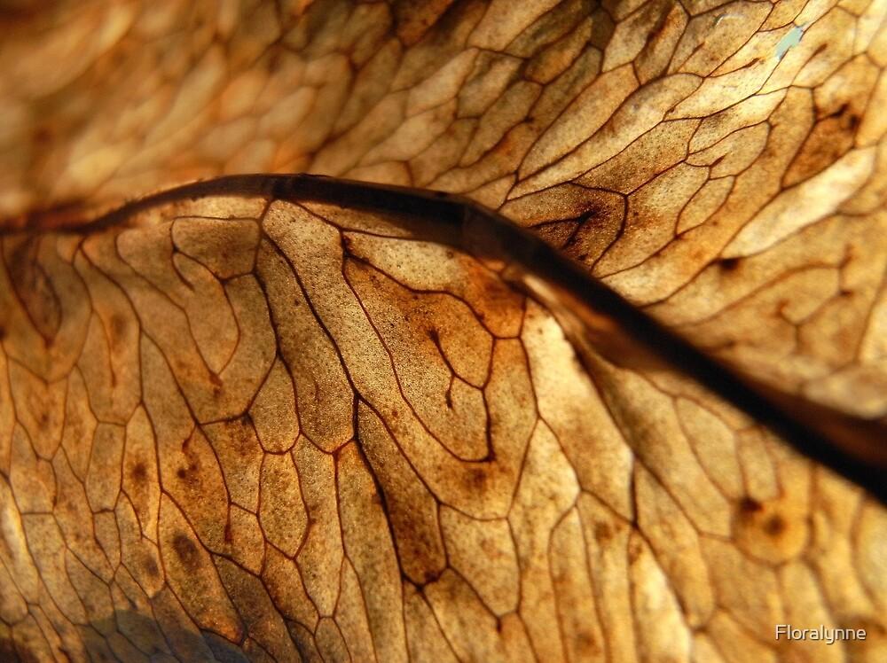 leaf IV by Floralynne