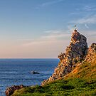 Seagull Castle - Alderney by NeilAlderney