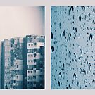 melancholic days by Morpho  Pyrrou