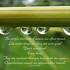 Water droplet inspiration card by sarnia2