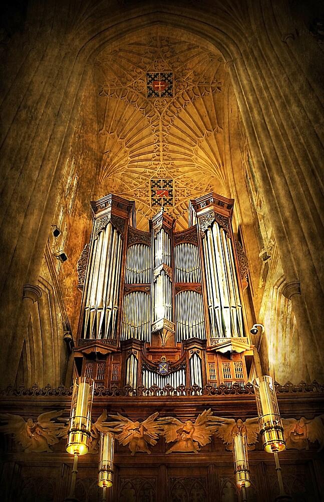 Organ by Svetlana Sewell