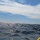 Kayaking is Swell by Al Williscroft