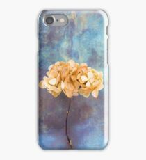 Faded iPhone Case/Skin