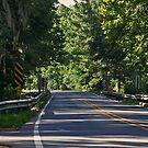 Seven Bridges Road by Phillip M. Burrow