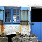 Blue Blue, Our Door Is Blue by © Loree McComb