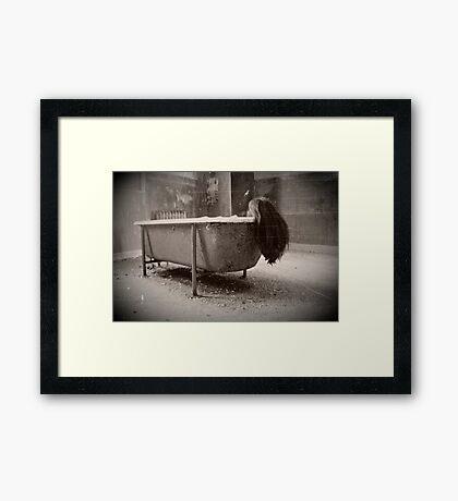 Unsettled  Framed Print