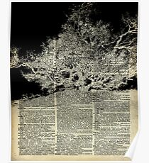 White And Bloack Lonley Tree Dictionary Art Poster