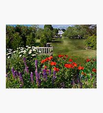 Flower - Poppy - Piece of heaven Photographic Print