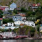 Houses of Signal Hill, Newfoundland  by Benjamin Brauer