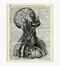 Medical Human Anatomy Illustration Over Old Book Page Photographic Print