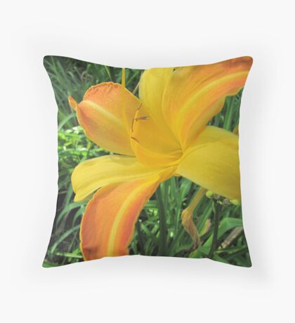 As painted by the sun Throw Pillow