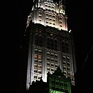 the Woolworth Building - NYC Night Architecture by fototaker
