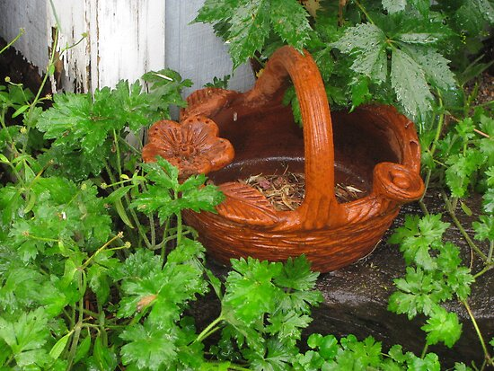 """""""Clay Flower Basket by Shed"""" by dfrahm"""