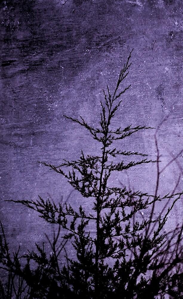 Lavender Darkness by Annie Adkins