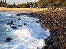 Duranbah Beach by W E NIXON  PHOTOGRAPHY