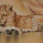 Lion cub on mum's tum 2 by Tom Godfrey
