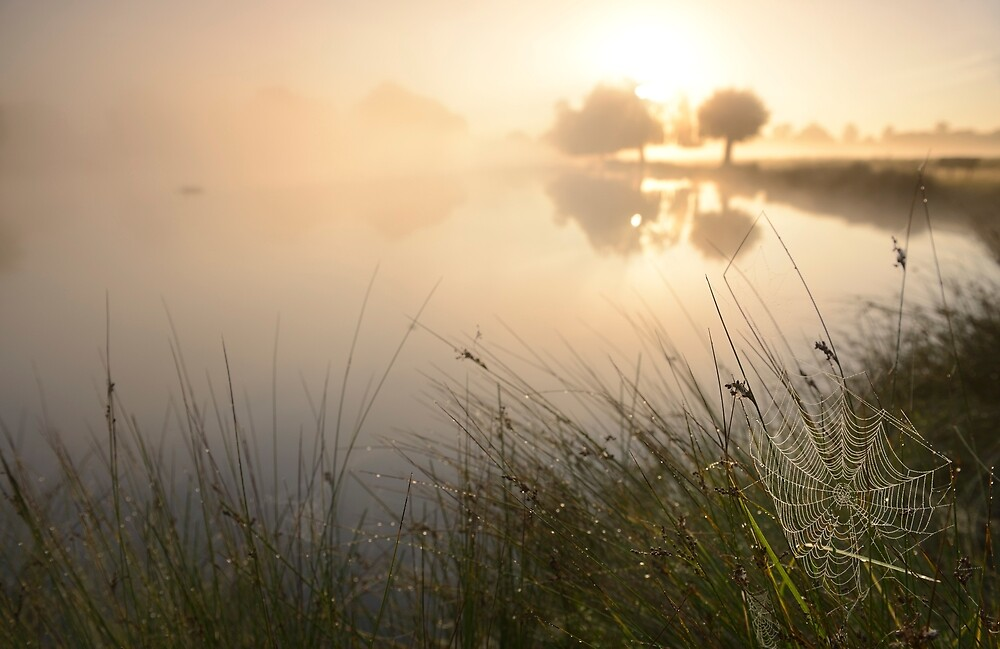 Autumn Sunrise by the Pond by Kasia Nowak