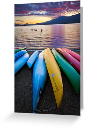 Lake Quinault Kayaks by Inge Johnsson