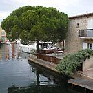 Port Grimaud by Fara