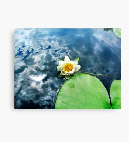 Reflections on a Cloudy Day Canvas Print