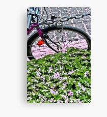 Biking through petals in Bonn Canvas Print
