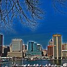 Skyline of Baltimore, Maryland by michael6076