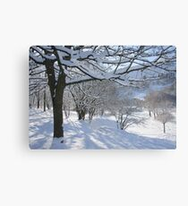 Cwm in snow Canvas Print