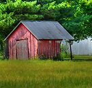 Little Red Shed by Sheryl Gerhard