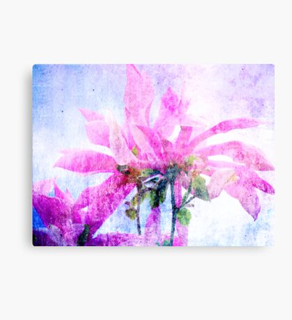 Beautiful Magnolia Canvas Print
