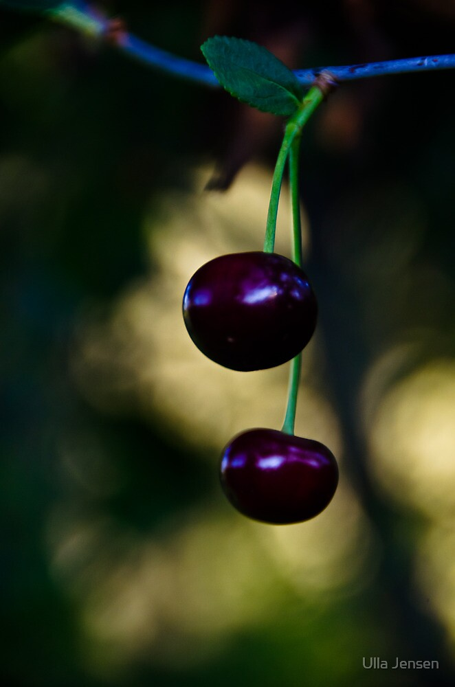 Mon cherry by Ulla Jensen
