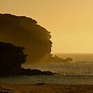 Wattamolla Headland by National Park Photography