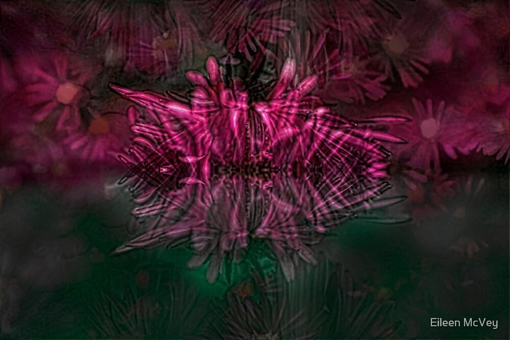 Fairy Dance by Eileen McVey