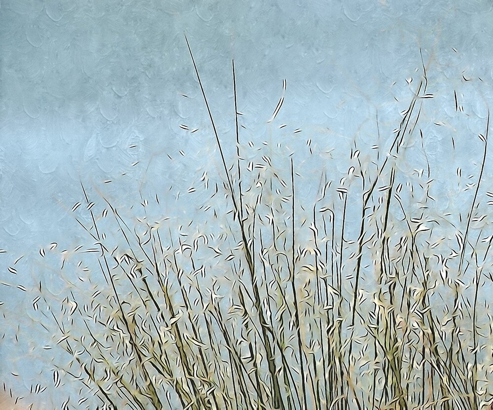 Serene by Annie Adkins