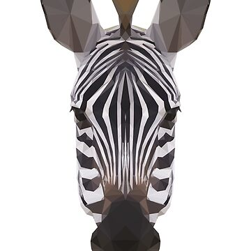 zebra by danielesaturn