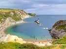 Man O War Bay (Spot the Seagull 2) by Colin  Williams Photography