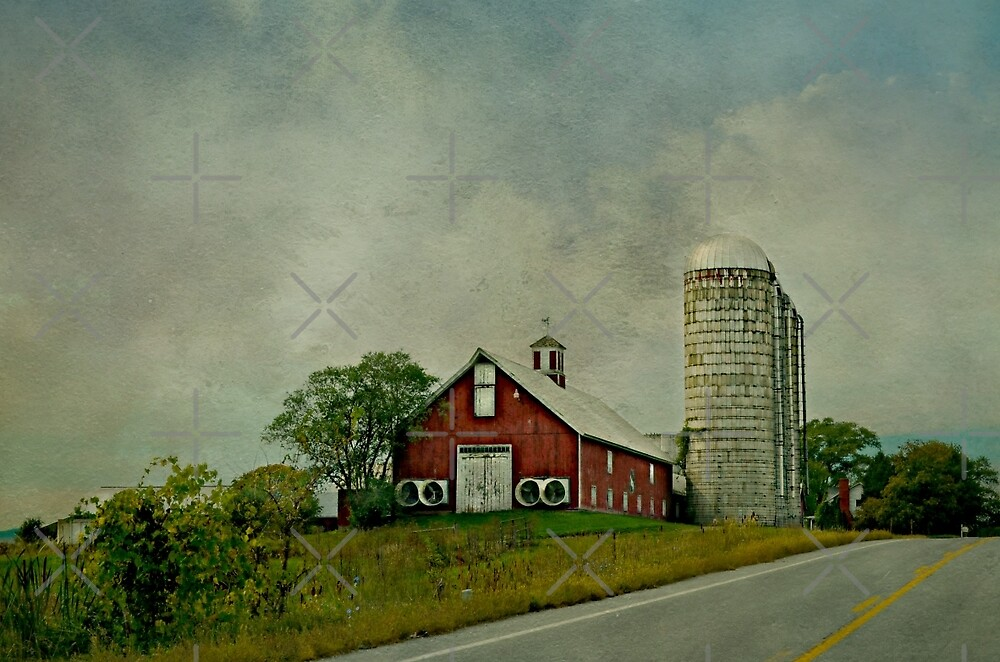 A Drive in the Country by Scott Mitchell