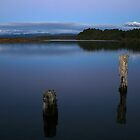 okarito lagoon  south westland  nz by rina sjardin-thompson