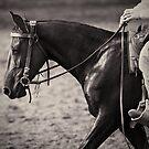 Australian Cowboy by Michelle  Wrighton