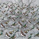 Birds birds birds by jennyjeffries